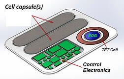 cell-capsles